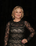 Amy Poehler. Tv comedy star Amy Poehler arrives on the red carpet for the 9th Annual Time 100 Gala in New York City on April 23, 2013 Stock Photos