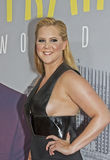 Amy Schumer Fotos de Stock