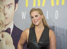 Amy Schumer Obraz Royalty Free