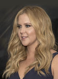 Amy Schumer Arrives at the 2015 Time 100 Gala Royalty Free Stock Photo