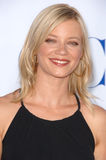 Amy Smart Royalty Free Stock Photography