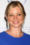 """Amy Smart. LOS ANGELES - NOV 10:  Amy Smart arrives at the """"Rescue Paws"""" Traveling Exhibit at W Los Angeles - Westwood on November 10, 2010 in Los Angeles, CA Stock Images"""