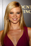 Amy Smart Royalty Free Stock Images