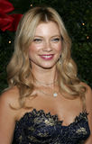Amy Smart Stock Photos