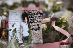 amy till tributewinehouse Royaltyfri Fotografi