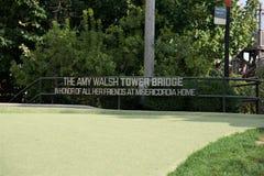 Amy Walsh Tower Bridge Chicago Illinois royaltyfria bilder