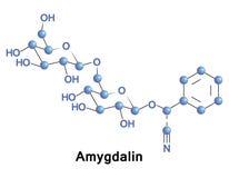 Amygdalin is a poisonous cyanogenic glycoside Stock Photography