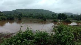 Amzing自然在下雨天 免版税库存图片