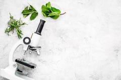 Análise de alimento Os inseticidas livram vegetais Ervas alecrins, hortelã perto do microscópio no espaço cinzento da cópia da op foto de stock