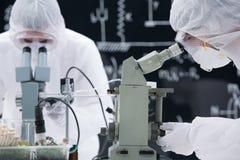 Análise do microscópio do laboratório Fotos de Stock
