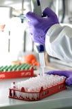 Análisis biológico del laboratorio con el tubo foto de archivo