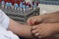 Análisis de sangre del laboratorio 11 Imagen de archivo libre de regalías