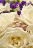 Anéis imagem de stock royalty free