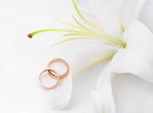 Anéis & flor de casamento Imagem de Stock Royalty Free