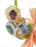 Anéis das gemas imagens de stock royalty free