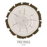 Anéis de árvore anuais do vetor Imagens de Stock Royalty Free