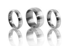 Anéis de aço inoxidável com embutimento de prata 4 Imagem de Stock