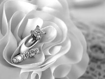 Anéis de casamento do diamante fotografia de stock