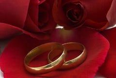 Anéis de casamento dourado e rosas vermelhas. Imagem de Stock Royalty Free