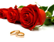 Anéis de casamento e rosas vermelhas foto de stock