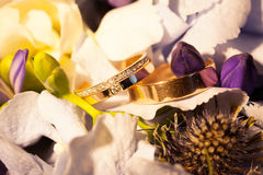 Anéis de casamento em flores Imagem de Stock