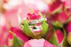 Anéis de casamento macro Imagem de Stock