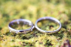 Anéis de casamento na grama Fotos de Stock Royalty Free
