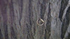 Anéis de casamento na madeira a aliança de casamento no fundo de madeira Alianças de casamento no fundo velho de madeira alianças Fotografia de Stock