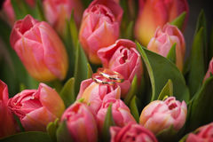 Anéis de casamento nas flores Foto de Stock