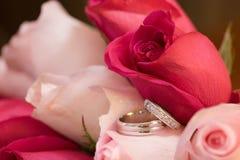 Anéis de casamento nas rosas Fotos de Stock