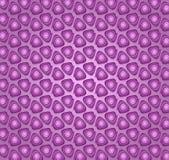 Anéis de crescimento espiral roxos Fotografia de Stock