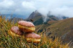 Anéis de espuma com as montanhas no fundo Foto de Stock Royalty Free