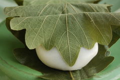 Anéis de espuma doces de Sakura Mochi envolvidos nas folhas Foto de Stock Royalty Free