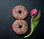 Anéis de espuma para oito março e flor no fundo preto Fotografia de Stock Royalty Free