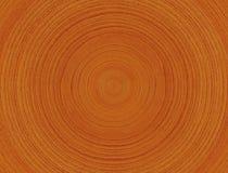 Anéis de madeira Fotografia de Stock Royalty Free