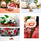 Anéis de muito casamento Foto de Stock Royalty Free