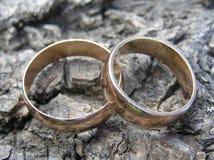 Anéis de ouro fotos de stock royalty free