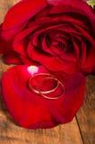 Anéis de ouro na pétala cor-de-rosa vermelha Foto de Stock