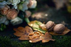 Anéis do outono Alianças de casamento em uma folha alaranjada do carvalho do outono fotografia de stock royalty free