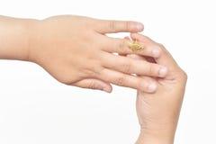 Anéis dourados bonitos Foto de Stock Royalty Free