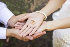 Anéis dourados nas palmas Fotos de Stock