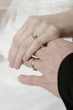 Anéis e mãos Fotografia de Stock Royalty Free