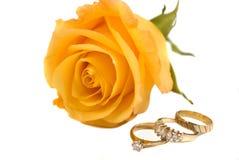 Anéis e Rosa Imagens de Stock