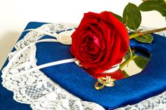Anéis e Roses-2 fotografia de stock royalty free
