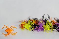 Anéis plásticos da aranha do brinquedo Imagem de Stock Royalty Free
