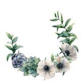 Anémona de la acuarela y guirnalda suculenta Flores pintadas a mano y hojas blancas, verdes, azules del eucalipto aisladas en bla stock de ilustración