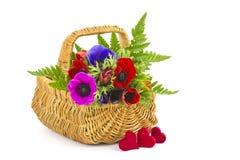 Anêmonas em uma cesta e em corações Imagem de Stock