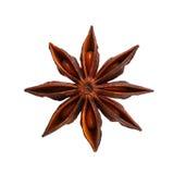 Anís de estrella Fotografía de archivo
