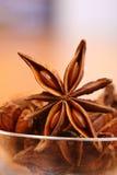 Anís de estrella Foto de archivo libre de regalías