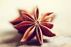 Anís de estrella Imagenes de archivo